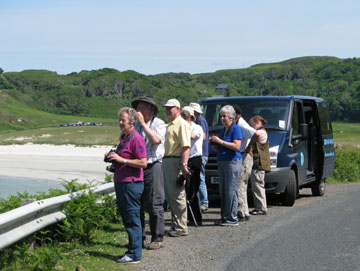 wildlife trips on mull